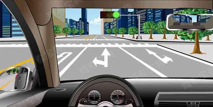 如图所示,在这种情况下驶进路口,车辆可以怎么行驶?