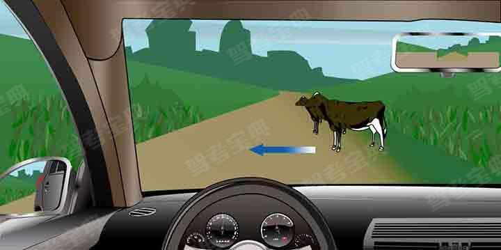 如图所示,驾驶机动车遇到这种情况时,以下做法正确的是什么?