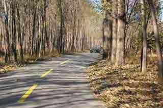 如圖所示,在鄉間道路行駛遇前方視線不良的彎道時,教練員應提示學員___。