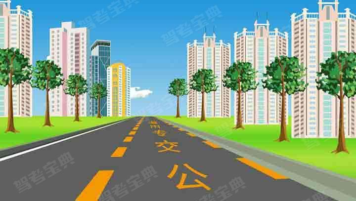 道路上劃設這種標線的車道內允許下列哪類車輛通行?