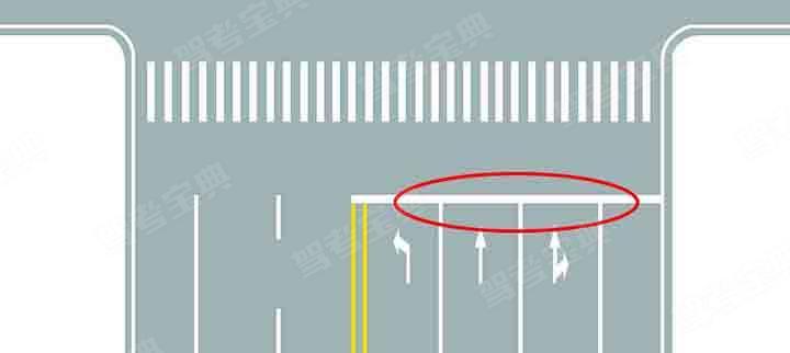 图中圈内白色横实线是何含义?